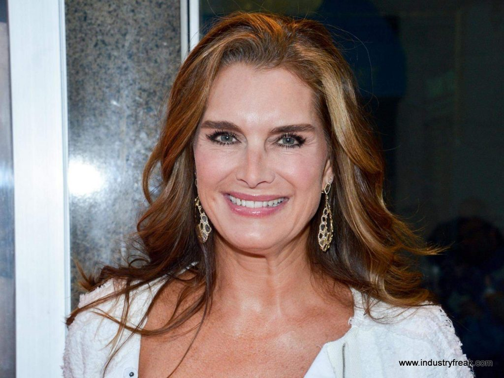 BROOKE SHIELDS supermodels